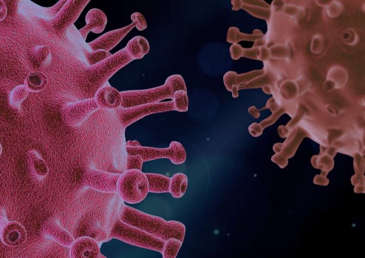 Intervju: Koronavirus iz perspektive zdravstvenog djelatnika