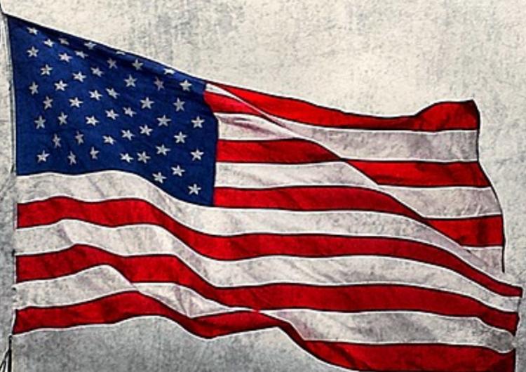 Američki predsjednički izbori- Festival demokracije ili demokratska farsa?