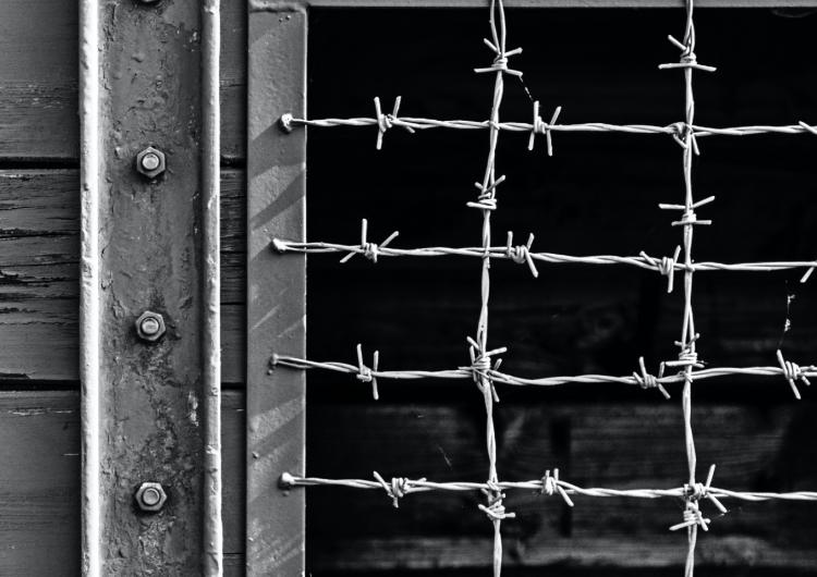 """""""Posljednja godina rata""""- knjiga koju vrijedi pročitati"""